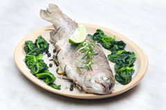 Baked bream Royalty Free Stock Image