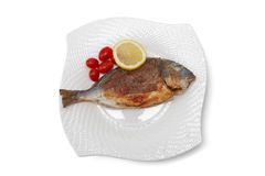 Baked bream fish with clipping path Royalty Free Stock Photos