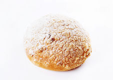 Baked bun dusted with sugar powder Royalty Free Stock Image