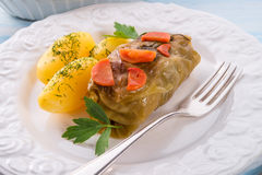 Baked cabbage rolls Stock Images