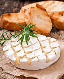 Baked Camembert cheese with rosemary and toast Stock Photography
