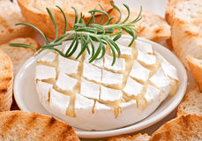 Baked Camembert cheese with rosemary and toast Royalty Free Stock Photos