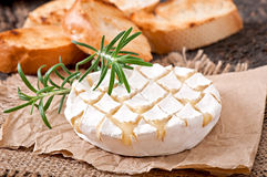 Baked Camembert cheese with rosemary and toast Stock Photo