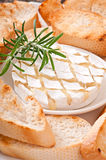 Baked Camembert cheese with rosemary and toast Royalty Free Stock Photo