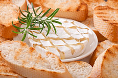 Baked Camembert cheese with rosemary and toast Royalty Free Stock Image
