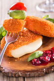 Baked Camembert with Cranberry Royalty Free Stock Image