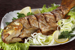 Baked carp fish with vegetables entirely. Traditional Christmas menu. Royalty Free Stock Images