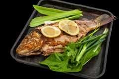 Baked carp marinated in lemon and spices with green leaf lettuce . Isolated. The horizontal frame royalty free stock image