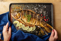 Baked carp with spices Royalty Free Stock Photo
