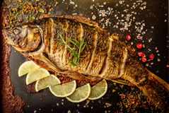 Baked carp with spices Stock Images