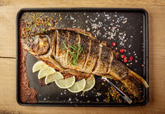 Baked carp with spices Royalty Free Stock Photography