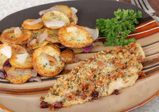 Baked Catfish Fillet Royalty Free Stock Photos