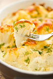 Baked Cauliflower Stock Photography