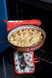 Baked cauliflower with parmesan Stock Images