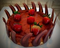 Baked cheese cake with strawberries royalty free stock photography