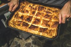 Baked cheese pie Stock Photo
