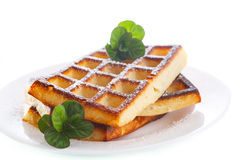 Baked cheese waffles with powdered sugar Stock Images
