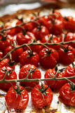 Baked cherry tomatoes. On a sheet of baking paper Stock Photography