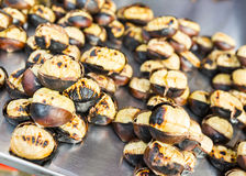 Baked chestnuts Stock Images