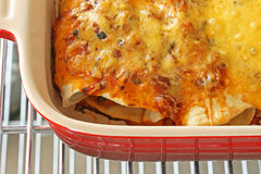 Baked Chicken Enchiladas Royalty Free Stock Photography