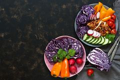 Baked chicken with fresh raw vegetables, red cabbage, radish, okrugcy, tomatoes, pepper on a dark rustic background. The concept o. Baked chicken with fresh raw Royalty Free Stock Photos