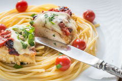 Baked chicken with parmesan and mozzarella Royalty Free Stock Image