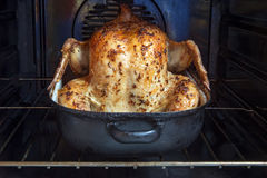 Baked chicken in a roasting pan Stock Photography