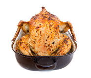 Baked chicken in a roasting pan Royalty Free Stock Photos