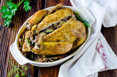 Baked chicken stuffed with buckwheat Stock Images
