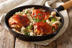 Baked chicken thighs with organic quinoa and mushrooms close up. Royalty Free Stock Photography