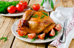 Baked chicken with tomatoes Stock Photos