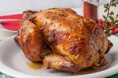 Baked chicken on white plate. Stock Photography