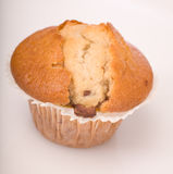 Baked chocolate chip muffin, dessert Royalty Free Stock Photography
