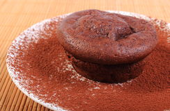 Baked chocolate muffins with cocoa on white plate Stock Photo