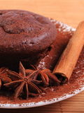 Baked chocolate muffins, star anise and cinnamon Stock Image