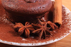 Baked chocolate muffins, star anise and cinnamon Stock Images