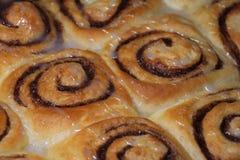 Baked cinnamon rolls Stock Photography