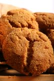Baked coconut cookies Stock Image