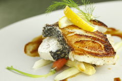 Baked cod. With vegetables isolated Royalty Free Stock Photos