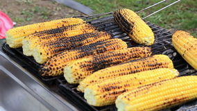 Baked corn on the grill stock video