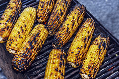 Baked corn on the grill Stock Photos