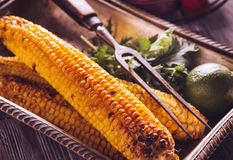 Baked corn in vintage tray with lime Stock Image