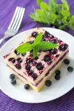 Baked cottage cheese pudding with blueberries Royalty Free Stock Photos