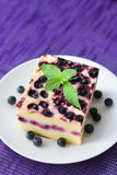 Baked cottage cheese pudding with blueberries Royalty Free Stock Photography