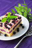 Baked cottage cheese pudding with blueberries Royalty Free Stock Image