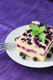 Baked cottage cheese pudding with blueberries Royalty Free Stock Images