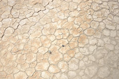 Baked and cracked ground in the desert Royalty Free Stock Photography