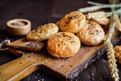 Baked crackling cookies sprinkled with cumin Royalty Free Stock Image