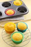 Baked Cup Cakes Royalty Free Stock Photography