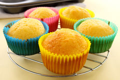 Baked Cup Cakes Stock Photography